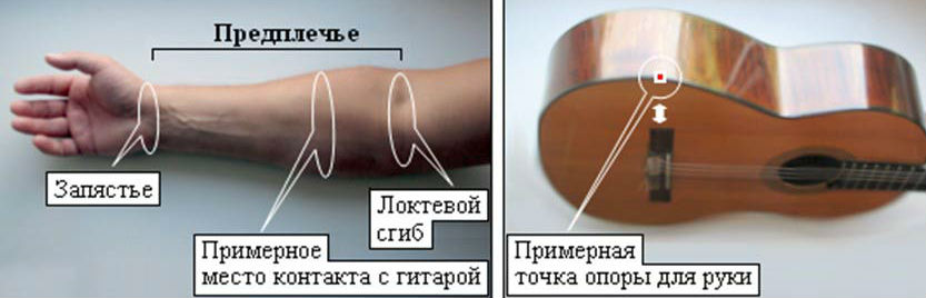 Названия частей руки